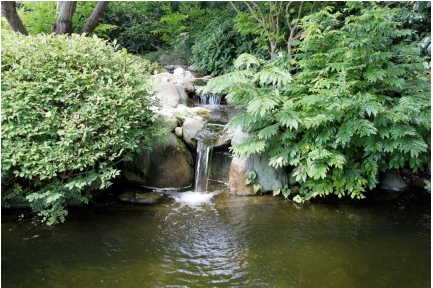 Bomba de agua para cascadas adria 12 18v 3800l h 3 metros for Estanque cascada